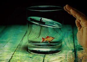 Какво подсказва, че ви липсва вода (5 точки за бърз тест)
