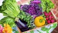 Митът за зеленчуците: Кога и колко трябва да ядем?